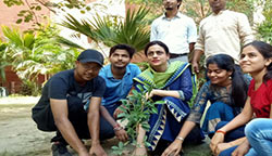Plantation Event And Engineer's Day Celebration